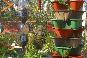 fare l'orto sul terrazzo