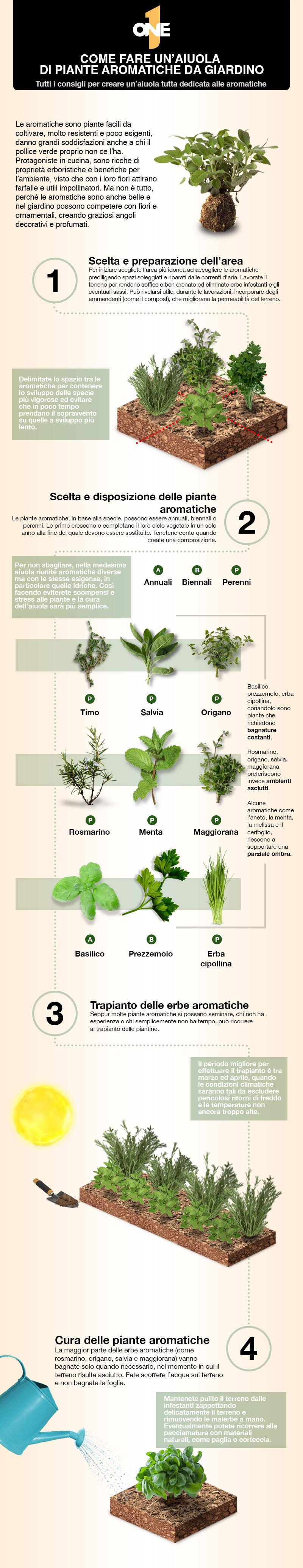 coltivare-piante-aromatiche-in-terrazzo