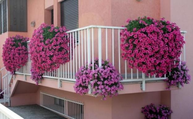 balconi fioriti inverno