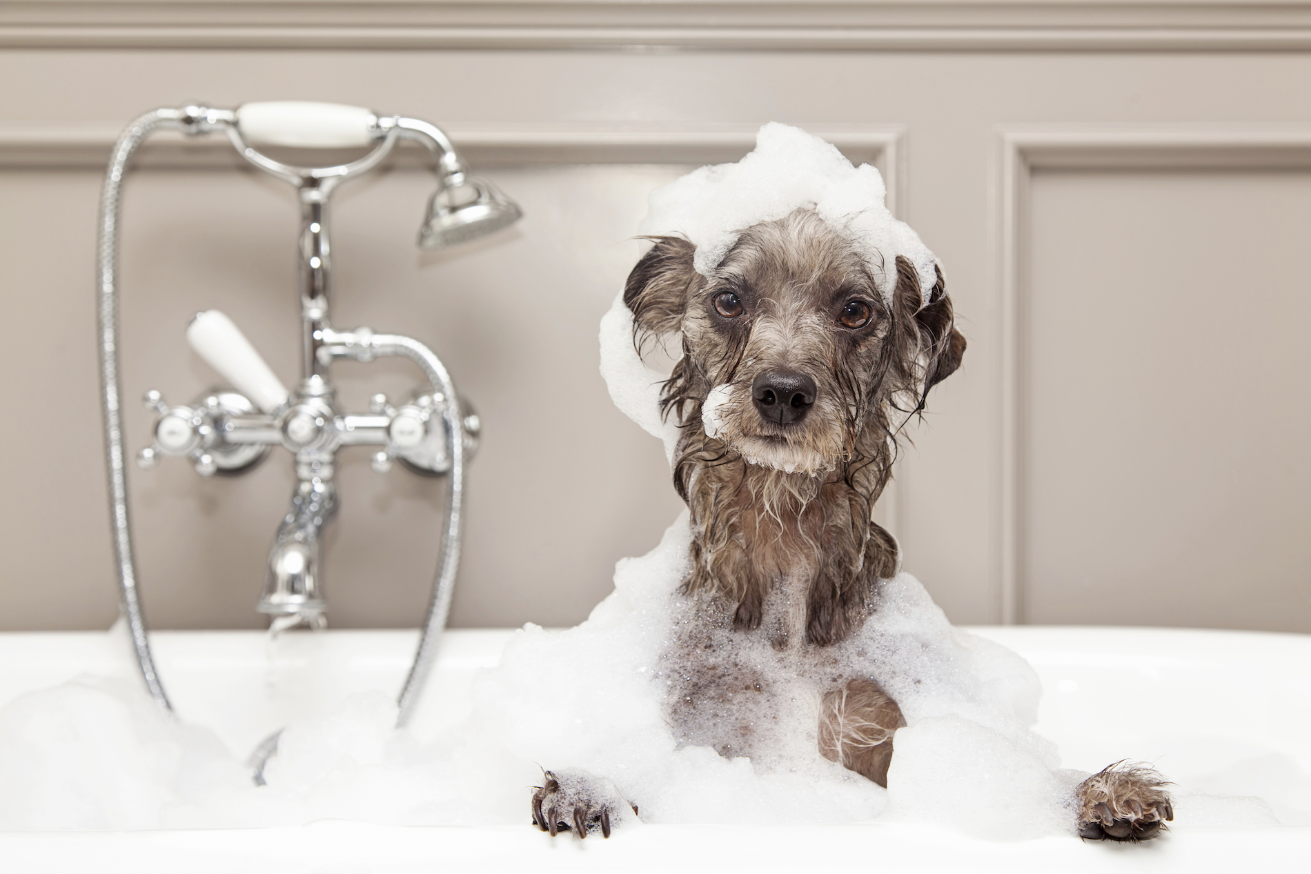 Le più belle vasche da bagno su instagram