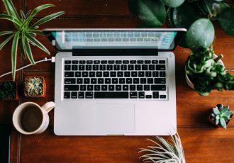 scegliere le piante più adatte per il tuo ufficio