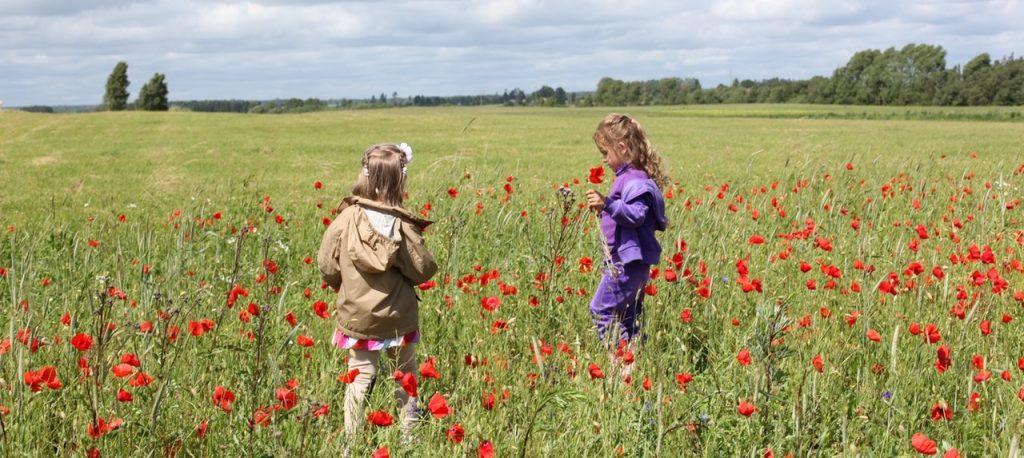 i benefici di insegnare educazione ambientale ai bambini